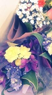 花束 ブーケの写真素材 [FYI04105282]