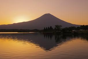 富士山と田貫湖の朝の写真素材 [FYI04105409]