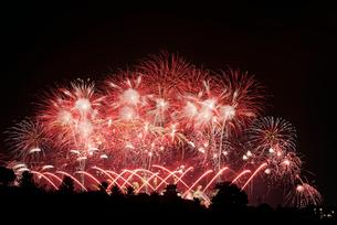 利根川大花火大会 スーパースターマインの競演 Queen,Fireworksの写真素材 [FYI04105458]