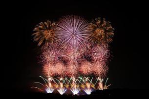 利根川大花火大会 スーパースターマインの競演 マリーゴールドの写真素材 [FYI04105463]