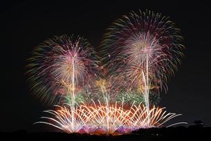 利根川大花火大会 フィナーレミュージックスターマイン THE SAKAI HANABIの写真素材 [FYI04105467]