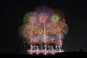 利根川大花火大会 フィナーレミュージックスターマイン THE SAKAI HANABIの写真素材 [FYI04105468]