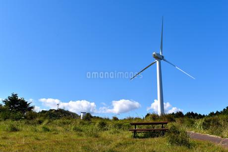 伊豆稲取高原の風力発電の写真素材 [FYI04105544]