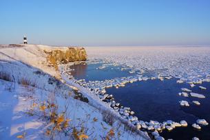 流氷の写真素材 [FYI04105703]