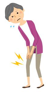 シニア女性 膝痛のイラスト素材 [FYI04105812]