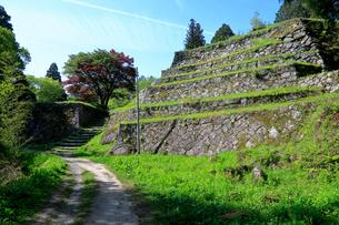 岩村城跡 六段壁の写真素材 [FYI04105899]