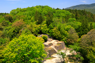 苗木城 大矢倉跡の写真素材 [FYI04105921]