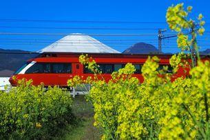 富士山と菜の花と小田急ロマンスカーGSEの写真素材 [FYI04105964]