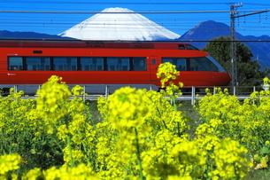富士山と菜の花と小田急ロマンスカーGSEの写真素材 [FYI04106096]