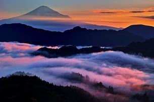 吉原より望む雲海越しの富士山の写真素材 [FYI04106137]