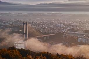秩父ミューズパークより望む雲海の出た秩父の街並みの写真素材 [FYI04106239]