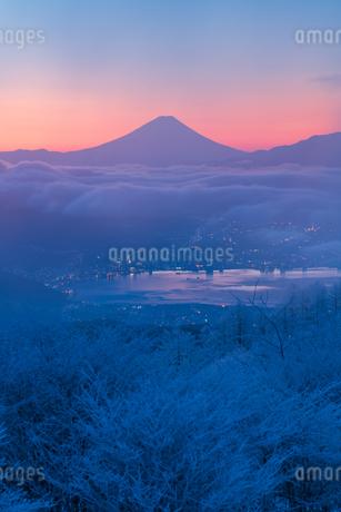 ほのかに染まる黎明の富士の写真素材 [FYI04106430]
