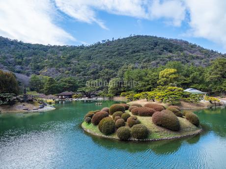 栗林公園 恋つつじ 香川県高松市の写真素材 [FYI04106547]