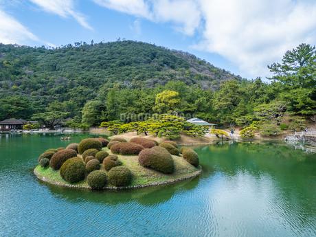 栗林公園 恋つつじ 香川県高松市の写真素材 [FYI04106550]
