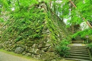 丹波亀山城跡の写真素材 [FYI04106556]