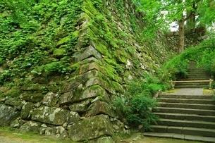 丹波亀山城跡の写真素材 [FYI04106558]