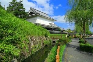 勝竜寺城公園の写真素材 [FYI04106566]