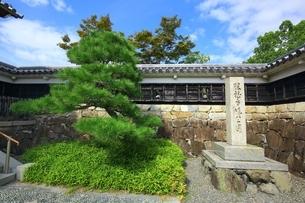 勝竜寺城公園の写真素材 [FYI04106568]