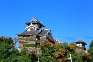 福知山城の写真素材 [FYI04106597]