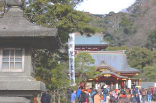 鶴岡八幡宮へお参りの写真素材 [FYI04106626]