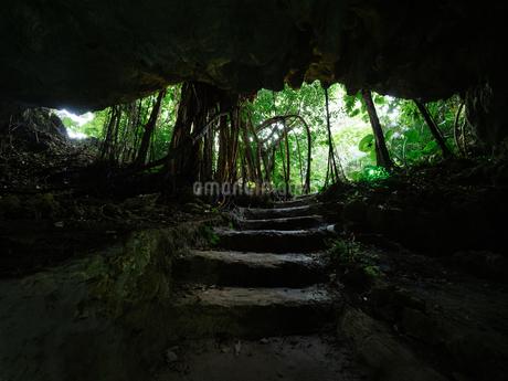 石垣島の洞窟の写真素材 [FYI04106995]