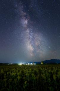 天の川とトウモロコシ畑の写真素材 [FYI04106997]