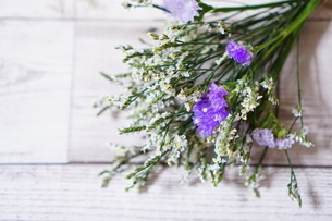 花の写真素材 [FYI04107114]