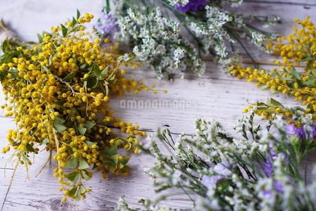 花の写真素材 [FYI04107115]