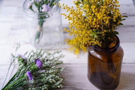 花の写真素材 [FYI04107116]