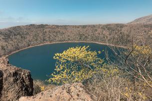 大浪池とマンサクの写真素材 [FYI04107158]