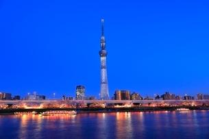 東京スカイツリーと隅田川のサクラの夕景の写真素材 [FYI04107688]