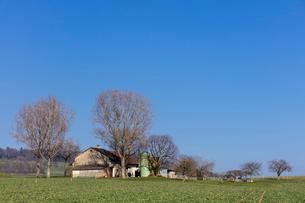 スイス、ジュネーブ近郊の田園風景の写真素材 [FYI04107709]