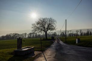 スイス、ジュネーブ近郊の田園風景の写真素材 [FYI04107739]