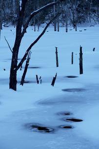 冬の自然湖の写真素材 [FYI04108090]