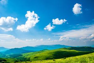 霧ヶ峰高原と夏空の写真素材 [FYI04108128]