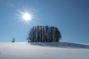 美しい北海道の風景 冬の美瑛町の写真素材 [FYI04108139]