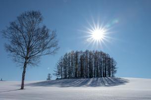 美しい北海道の風景 冬の美瑛町の写真素材 [FYI04108140]