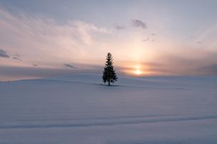 美しい北海道の風景 冬の美瑛町の写真素材 [FYI04108150]