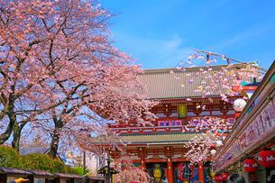 浅草寺の仲見世通りと宝蔵門の写真素材 [FYI04108230]