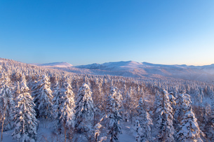 美しい冬の大雪山 旭岳の風景の写真素材 [FYI04108404]