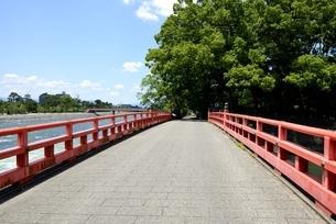 新緑,宇治川上流に架かる観流橋の写真素材 [FYI04108953]