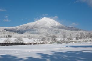 冬景色の写真素材 [FYI04109195]