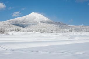 冬景色の写真素材 [FYI04109197]