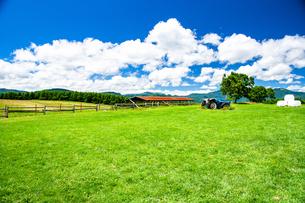 草原と夏空の写真素材 [FYI04109224]