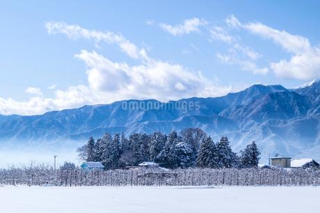 信州 長野県大町市常盤地区 安曇野の冬の写真素材 [FYI04109330]
