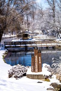 信州 長野県安曇野市 冬の安曇野わさび田湧水群公園の写真素材 [FYI04109331]