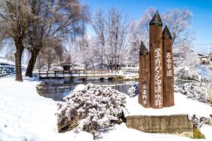 信州 長野県安曇野市 冬の安曇野わさび田湧水群公園の写真素材 [FYI04109333]