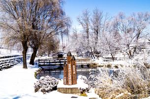 信州 長野県安曇野市 冬の安曇野わさび田湧水群公園の写真素材 [FYI04109335]