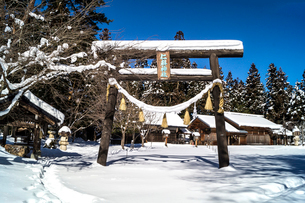 信州 長野県大町市 冬の木崎湖の仁科神社の写真素材 [FYI04109367]