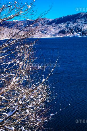 信州 長野県大町市 冬の青木湖と雪の華の写真素材 [FYI04109394]
